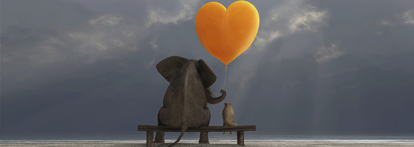 An elephant sitting on a bench with a friend, holding a heart balloon.